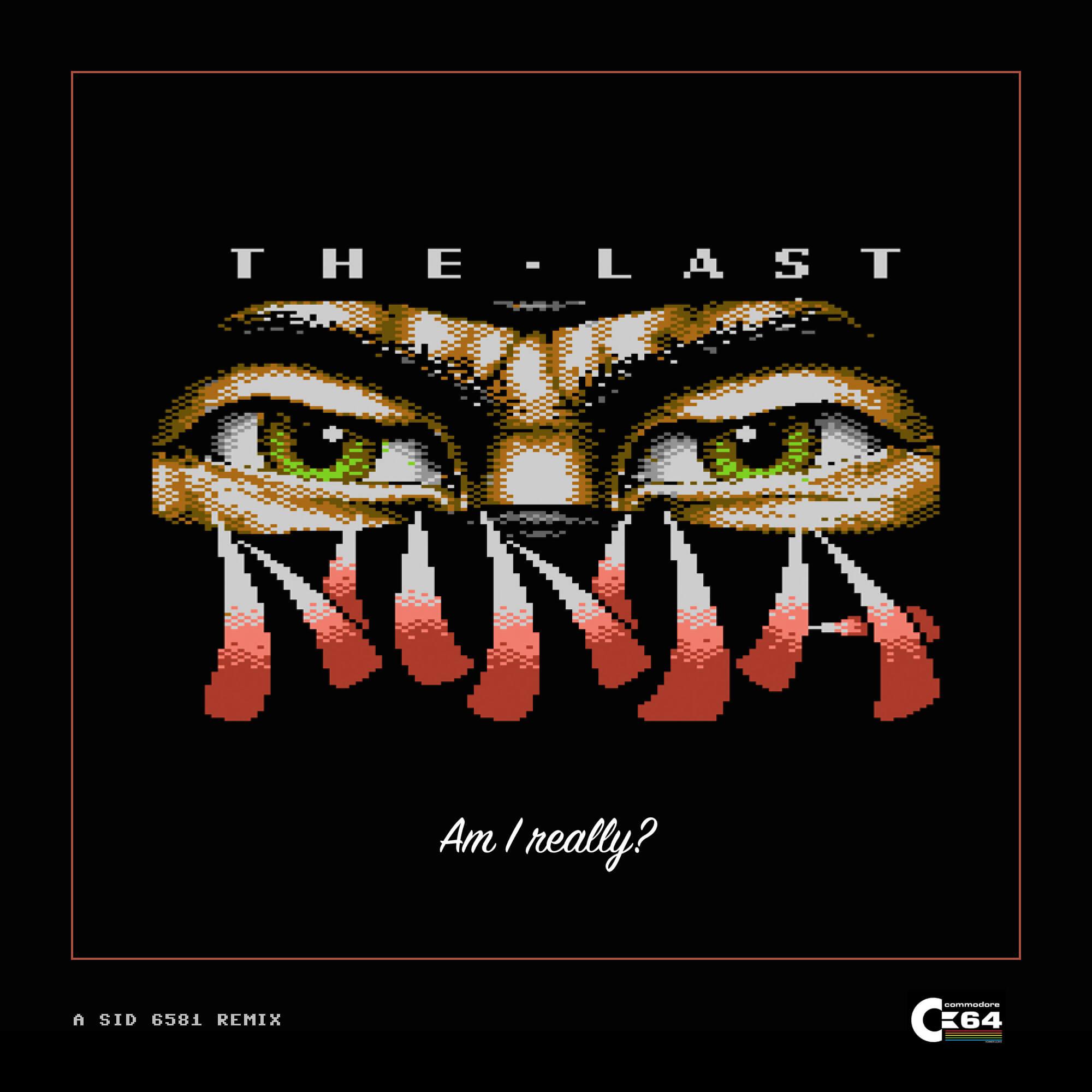 The-Last-Ninja-1